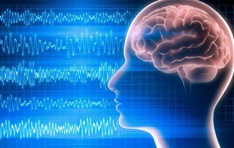EEG Brain image